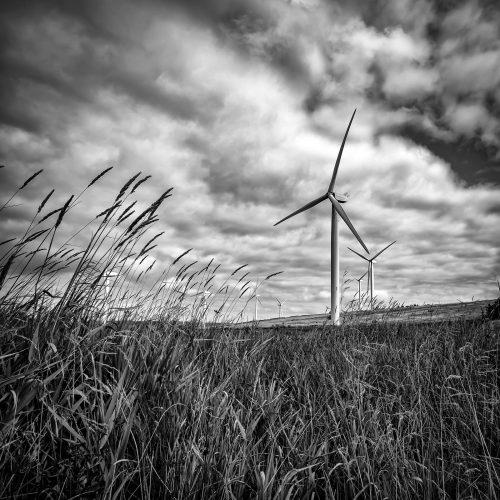 Baillie Wind Farm by Gareth Watkins