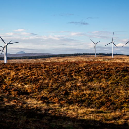 Camster Windfarm from Yarrows by Grant Coghill