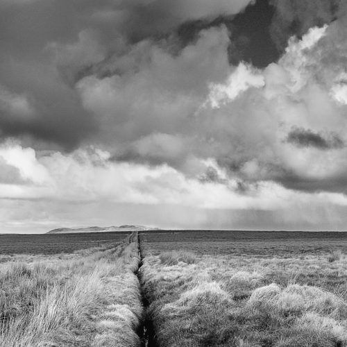 Far Horizon by Donald Sandison
