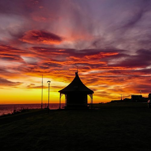 Morning Glory At The Pilot House by Ally Mackechnie