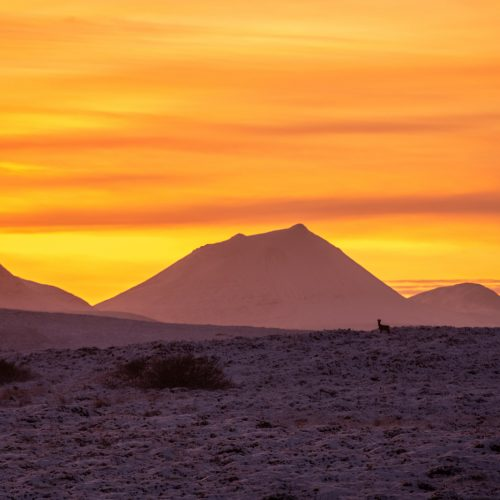 Morven by Colin Campbell