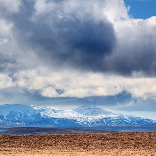Snow On Caithness Hills by Donald Sandison